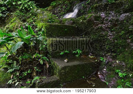 Git Git waterfall, Ubud, Bali - July 2017: The old stairs to the way of Git Git waterfall