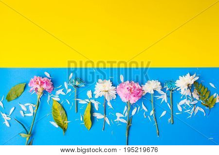 flat lay frame with flowers branches leaves on pastel backgroundflat lay frame with flowers branches leaves on pastel background
