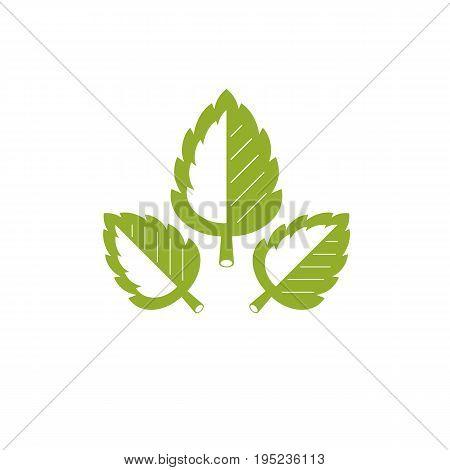 Vector spring leaves vector illustration. Alternative medicine concept phytotherapy logo.