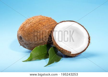 Two sweet coconuts on a light blue background. Close-up tasty coconut cut in half, laying on fresh leaves. Colorful summer fruits. Ingredients for gourmets.