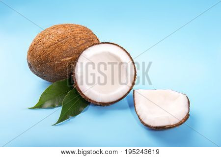 Colorful slices of coconuts on a saturated light blue background. Nutritious coconut cracked into pieces. Freshness, nature, summer concept. Vegan cooking.