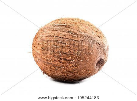 Single tropical brown coconut over a white isolated background. Fresh tasteful whole coco full of vitamins. Delicious organic vegetarian food. Vegan diet.