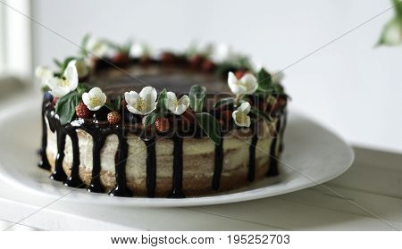 Naked drip cake with chocolate, decorated with strawberries, jasmine flowers and honeysuckle on white wooden table on big plate