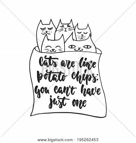 Cats are like potato chips, you can't have just one - hand drawn dancing lettering quote isolated on the white background. Fun brush ink inscription for photo overlays, greeting card or poster design