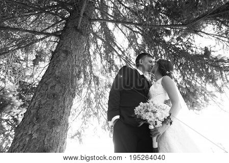 black white photography a pair of bride and groom on the background of the park's trees