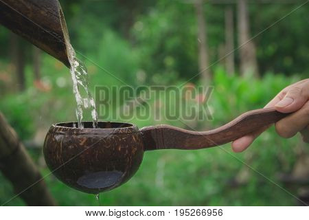 Water pouring in coconut shell and hand holding the water bowl made from coconut shell