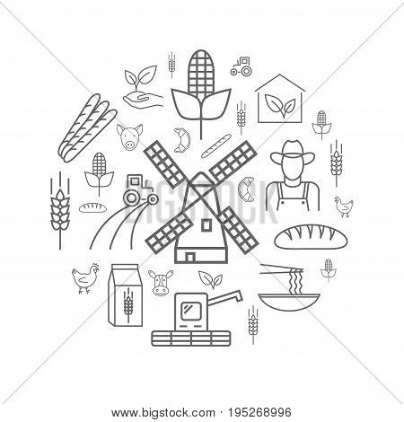 Wheat production. Eco poster. Line icons set. Vector signs for web graphics.