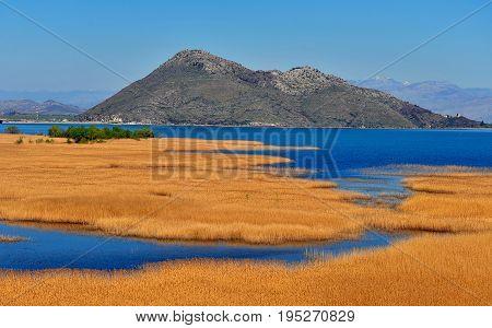 Beautiful view of lake Skadar national park Montenegro