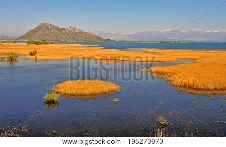 View of Skadar national park on summer. Natural landcsape of Montenegro