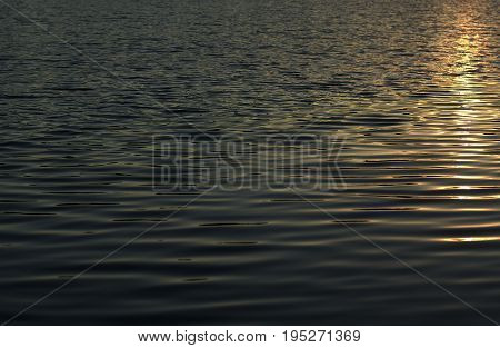 Solar Path On The Water, Ripples On The Water Surface, Light Waves