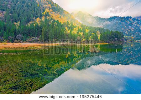 Autumn view of the lake with pure water at early morning time. Jiuzhaigou nature reserve Jiuzhai Valley National Park China