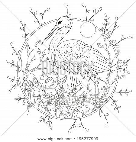 Stylized pelican bird among foliage. Freehand sketch for adult anti stress coloring book page .