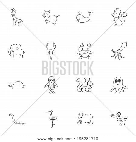 Set Of 16 Editable Zoo Icons. Includes Symbols Such As Ewe, Pelican, Rat And More. Can Be Used For Web, Mobile, UI And Infographic Design.