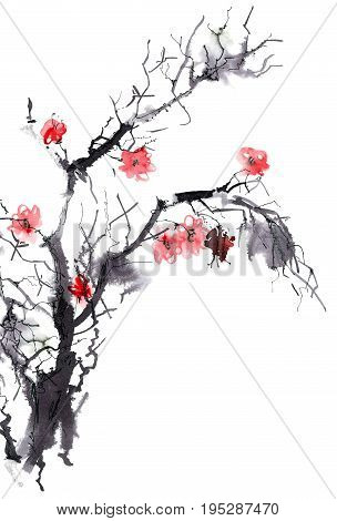 Watercolor and ink illustration of blossom tree branch. Sumi-e u-sin painting.