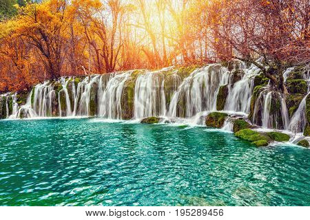 Autumn view of the waterfall with pure water at sunrise time. Jiuzhaigou nature reserve Jiuzhai Valley National Park China.