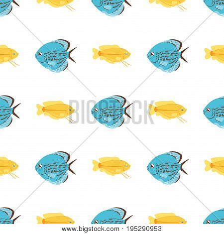 Exotic tropical fish seamless pattern colors underwater ocean species aquatic nature flat isolated vector illustration. Decorative wildlife cartoon fauna aquarium water marine life.