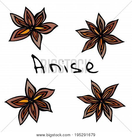 Stars of Anise. Realistic Hand Drawn Doodle Style Sketch. Vector Illustration Isolated On a White Background.