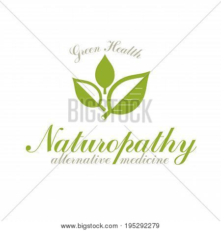 Green spring leaves vector symbol for use in medical and social theme advertisement. Raw food diet vector graphic conceptual logo no gm theme.