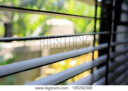 Window Blind Interior Decoration