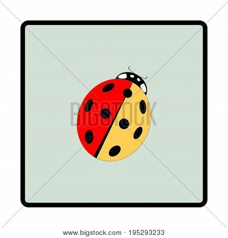 Ladybird isolated. Illustration ladybug in green frame. Cute colorful sign insect symbol spring summer garden. Template for t shirt apparel card poster. Design element Vector illustration