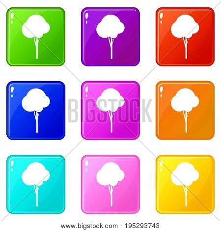Fluffy tree icons of 9 color set isolated vector illustration