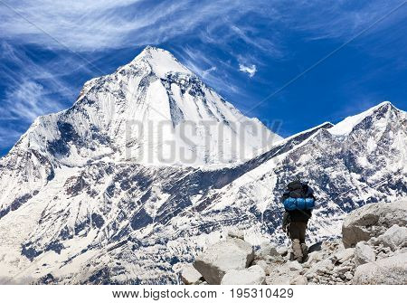 View of mount Dhaulagiri with tourist great himalayan trail Nepal
