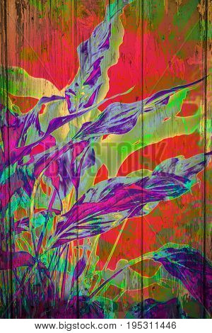 Beautiful Exotic plants background with colourful eaves