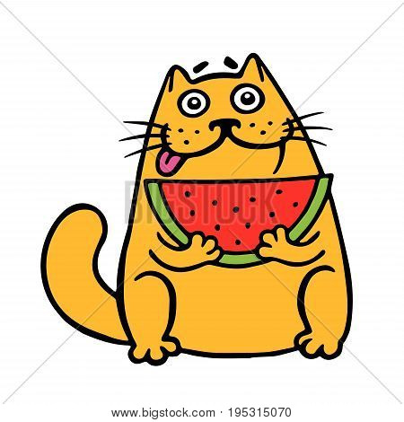 Cute fat cat eats watermelon. cat. Funny cartoon cool character. Contour freehand digital drawing. White color background. Isolated vector illustration.