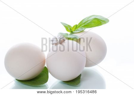 Three Chicken Eggs With A Sprig Of Basil