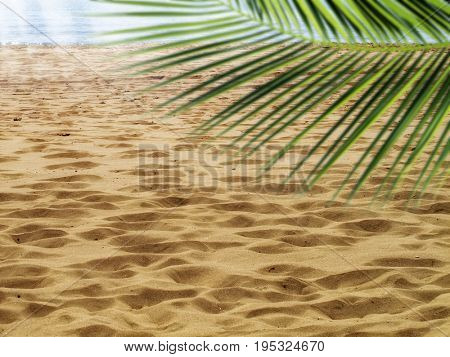 sandy beach and sea with sunlight