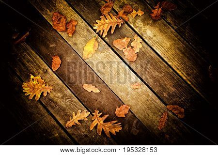 elevated view of close up dried autumn leaves on wooden floor.