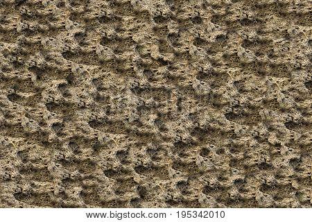 Natural texture stone limestone light beige color uneven different layers