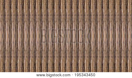 basis related trunks stick cane bamboo in natural solid foundation drawing