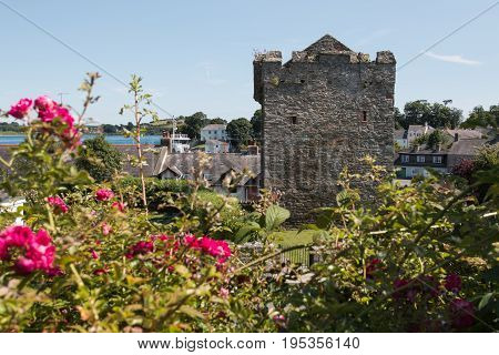 Strangford Castle in County Down, Northern Ireland