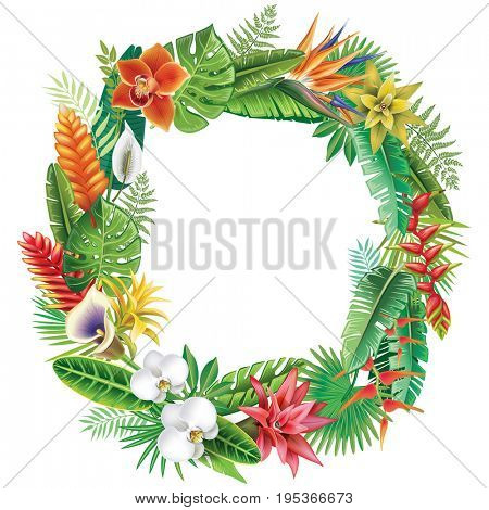 Round Frame from tropical plants. Raster version