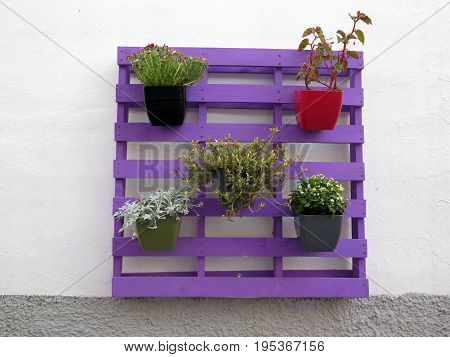 Flower Pots On Painted Wooden Pallet
