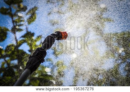 Spraying the leaves of trees against pests with chemicals.