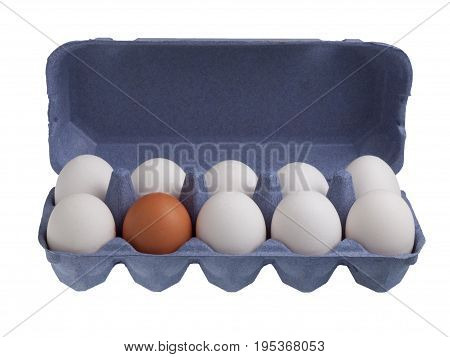 One brown egg among white eggs isolated on white background