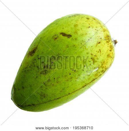 Mango fruit Nontoxic isolated on white background with clipping path.
