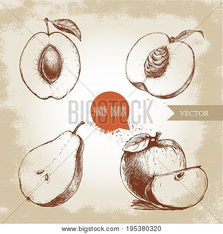 Hand drawn sketch style fruits set. Apricot peach half with leaf half pear apples composition. Eco food vector illustration collection on old background.