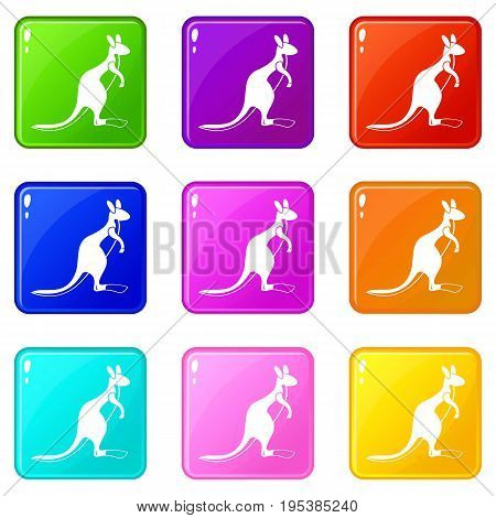 Kangaroo icons of 9 color set isolated vector illustration