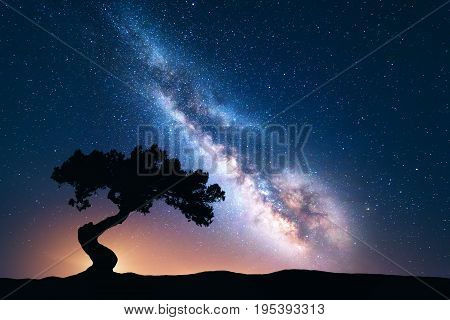 Milky Way with alone old crooked tree on the hill. Colorful night landscape with bright milky way starry sky and tree in summer. Space background. Amazing astrophotography. Beautiful universe. Travel