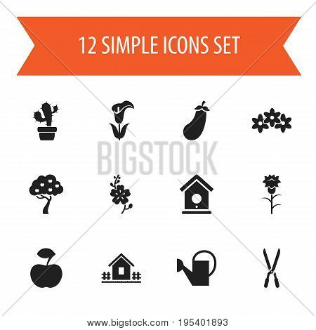 Set Of 12 Editable Planting Icons. Includes Symbols Such As Aubergine, Flower, Fruit Woods And More. Can Be Used For Web, Mobile, UI And Infographic Design.