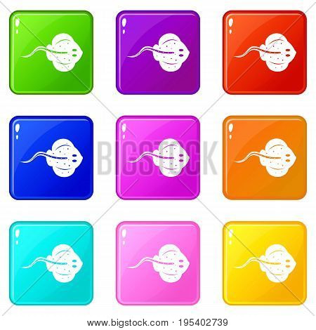 Stingray fish icons of 9 color set isolated vector illustration