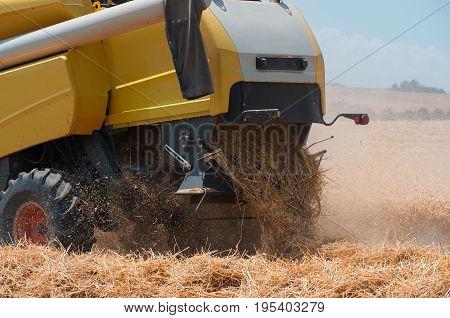 Combine harvester from close up during harvest . Harvesting of wheat. Combine harvester agriculture machine harvesting golden ripe wheat field. Agriculture