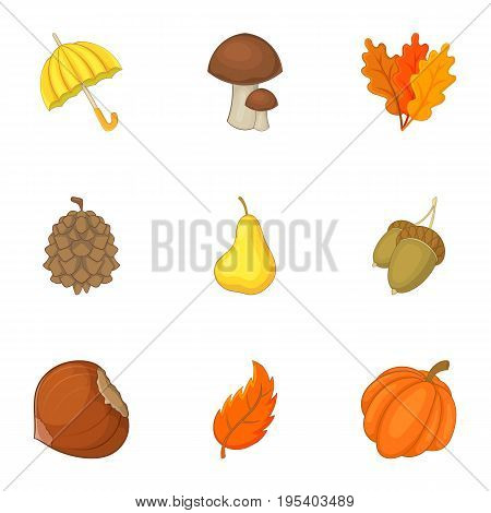 Forest resources icons set. Cartoon set of 9 forest resources vector icons for web isolated on white background