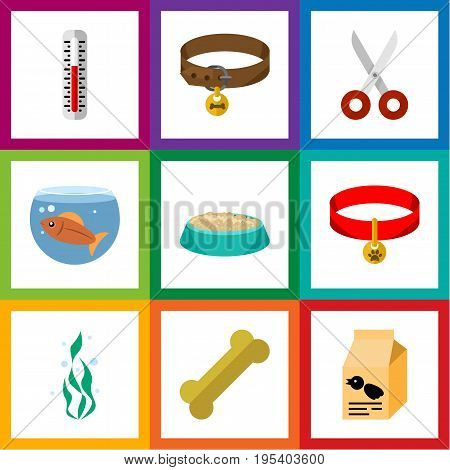 Flat Icon Pets Set Of Temperature Measurement, Osseous, Fishbowl And Other Vector Objects. Also Includes Plant, Osseous, Nutrient Elements.