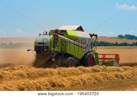 Harvest . Combine harvester harvest ripe wheat on a farm