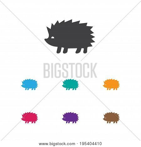 Vector Illustration Of Animal Symbol On Hedgehog Icon. Premium Quality Isolated Porcupine Element In Trendy Flat Style.