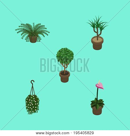 Isometric Plant Set Of Plant, Tree, Grower And Other Vector Objects. Also Includes Fern, Plant, Flowerpot Elements.